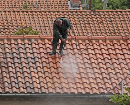 Produit anti mousse pour toiture
